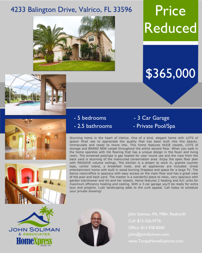 4233 Balington Drive Valrico 33596 - Price Reduced