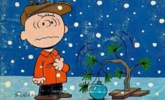 John Soliman and Associates HomeXpress Realty Inc - Charlie Brown Christmas
