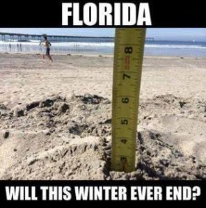 Florida Winter