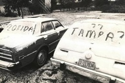 snow-in-tampa