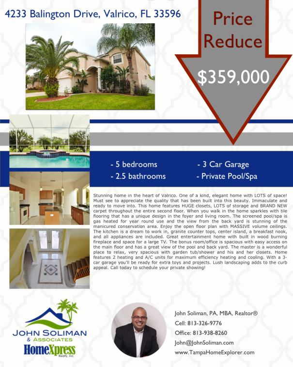 Price Reduced - 4322 Balington Drive Valrico FL 33596